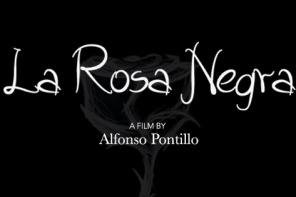 """Una distanza insormontabile. Alfonso Pontillo racconta """"La Rosa Negra"""""""