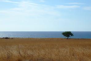 Elegia in riva al mare