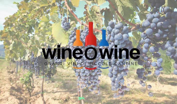 Scoperte e sapori, il vino ha una nuova dimensione con wineowine
