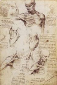 il-corpo-di-marco-immagine